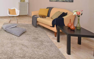 Harris Services - Blog - Rug Cleaning Benefits - Cleaning Products